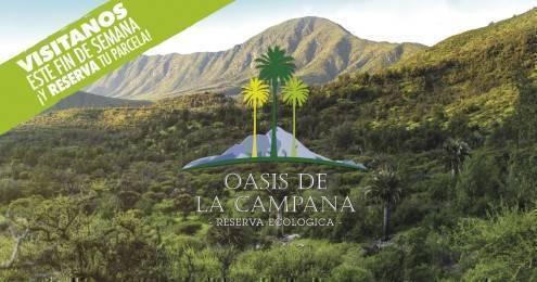 oasis de la campana