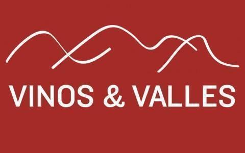 VINOS Y VALLES BANNER