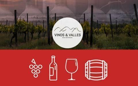 banner vinos y valles