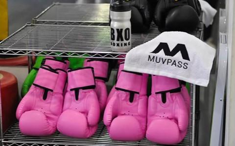 MuvPass-2