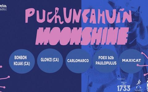 banner Festival Puchuncahuín